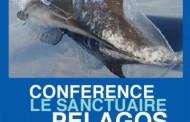 Le sanctuaire Pélagos. Conférence environnement à La Londe-les-Maures