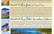 Balades nature commentées en avril à Ramatuelle