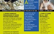L'aigle de Bonelli au Muséum d'Histoire Naturelle de Toulon et du Var