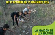 Novembre à la Maison de la Nature des Quatre Frères - le Beausset
