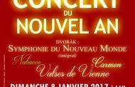 AMADEVS présente son Concert du Nouvel An