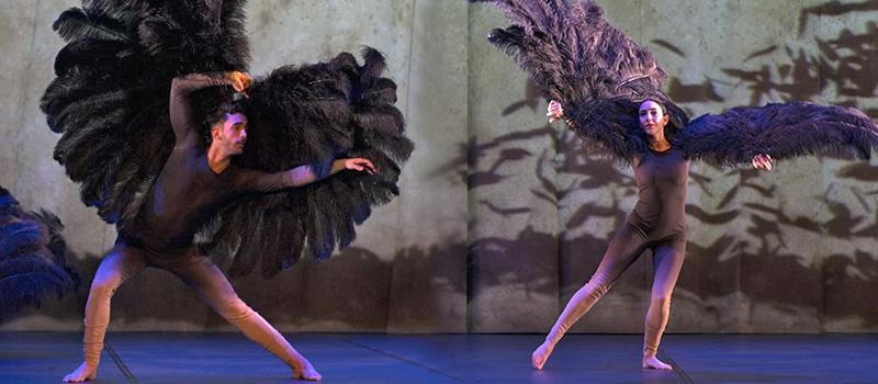 Théâtres en Dracénie présentent Vuelos