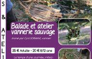 Balade et atelier vannerie sauvage à la Garde-Freinet