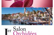 1er salon Orchidées Sanary