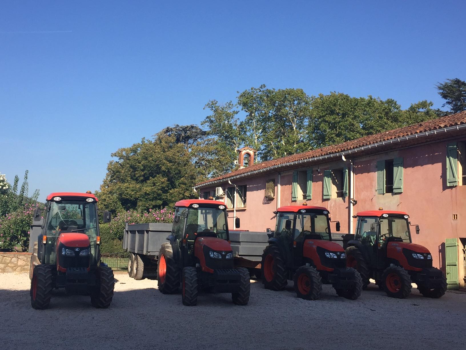 Côtes de Provence Pierrefeu : les vendanges ont commencé