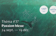 Théma Passion Bleue : vous aussi faites un plongeon dans la mer !