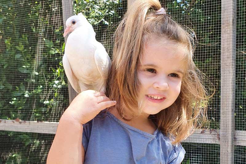 Jardin Forever : un jardin écologique et animalier au Pradet