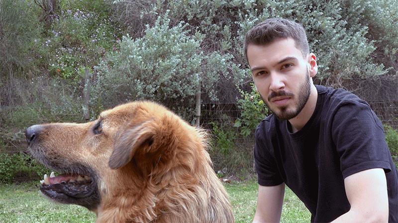 Adopter un chien : visite au refuge Assistance aux Animaux de Toulon