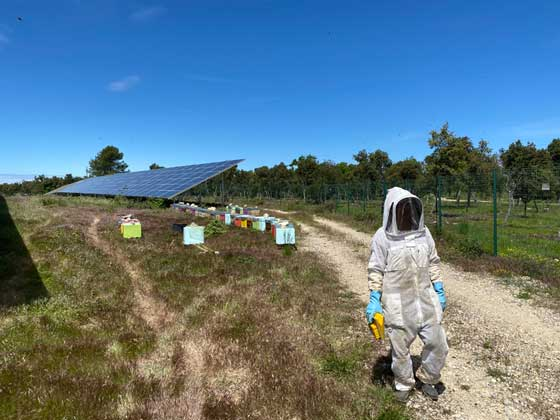 ENGIE Green dans le Verdon avec Apicluster et France Nature Environnement