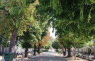 Cimetières de Toulon : les conditions d'accès pour la Toussaint 2021